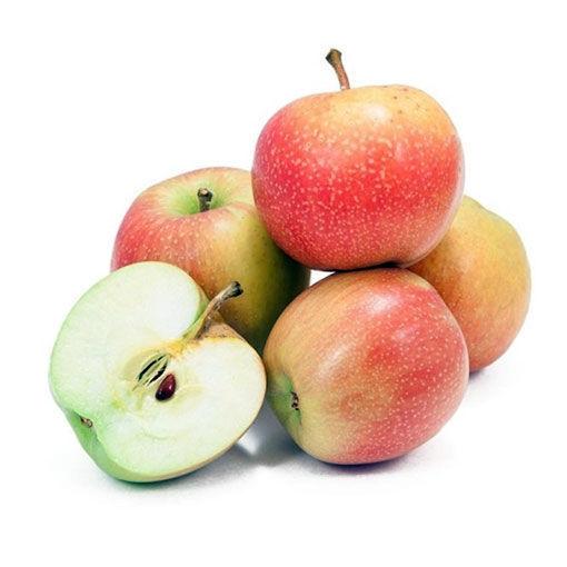 تصویر سیب گلاب
